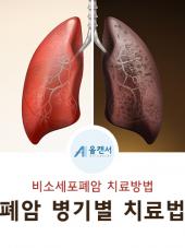 #10. 비소세포폐암 병기별 …
