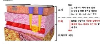 혈액 속 질병 원인 물질을 실시간 감지하는 기술 개발